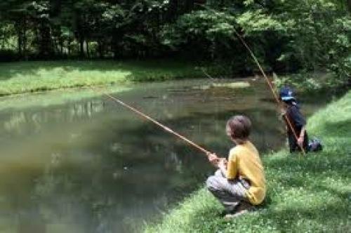 ensinando a pescar